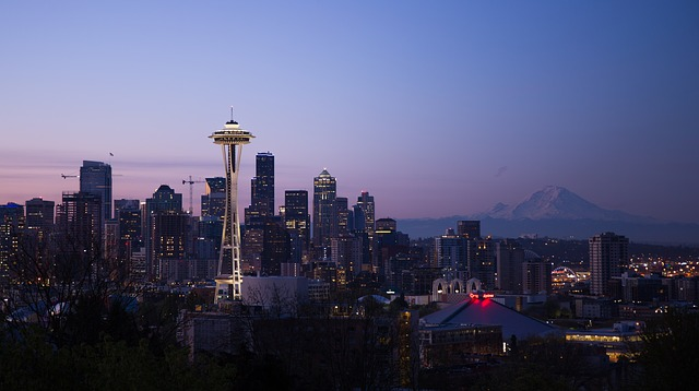 seattle skyline at night mt rainer background